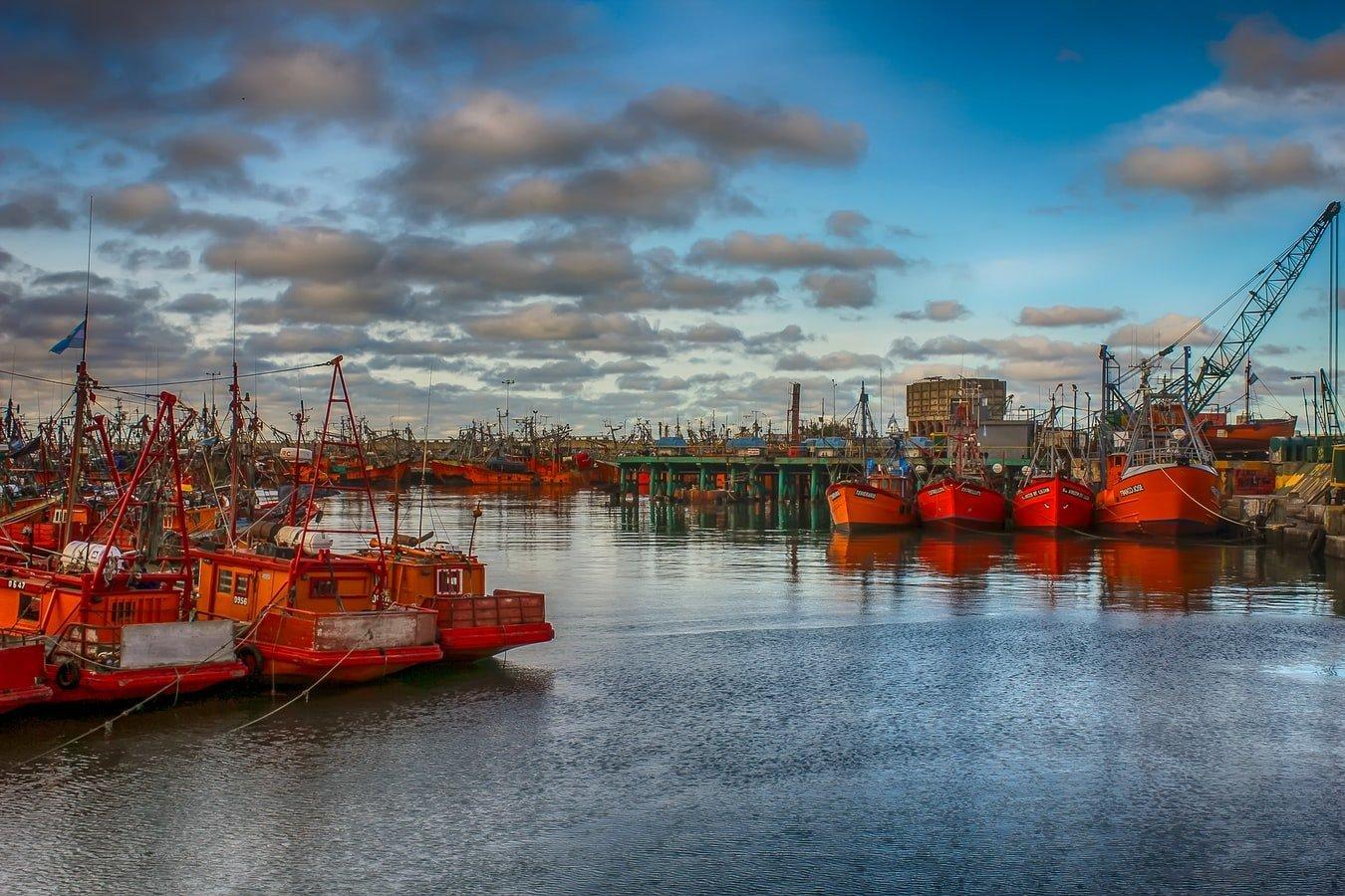 Fischerboote im Hafen von Mar del Plata Argentinien
