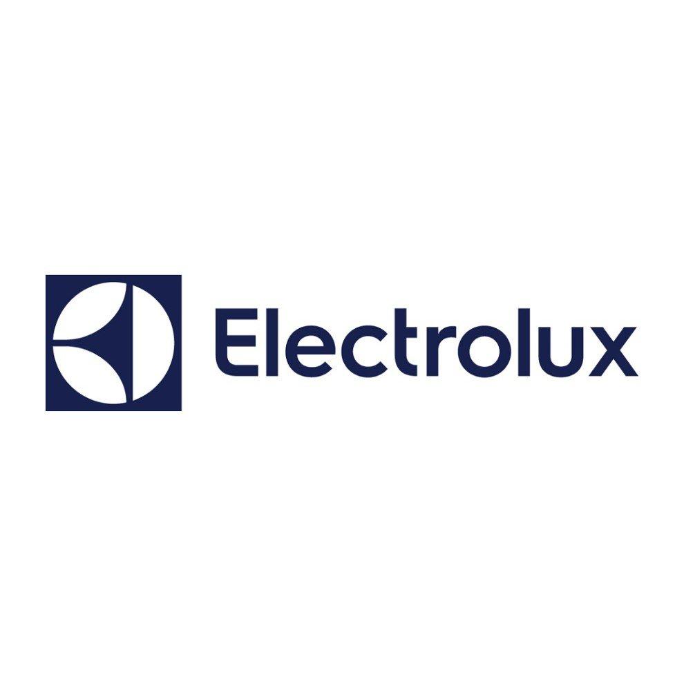 Logo von Electrolux Schweden