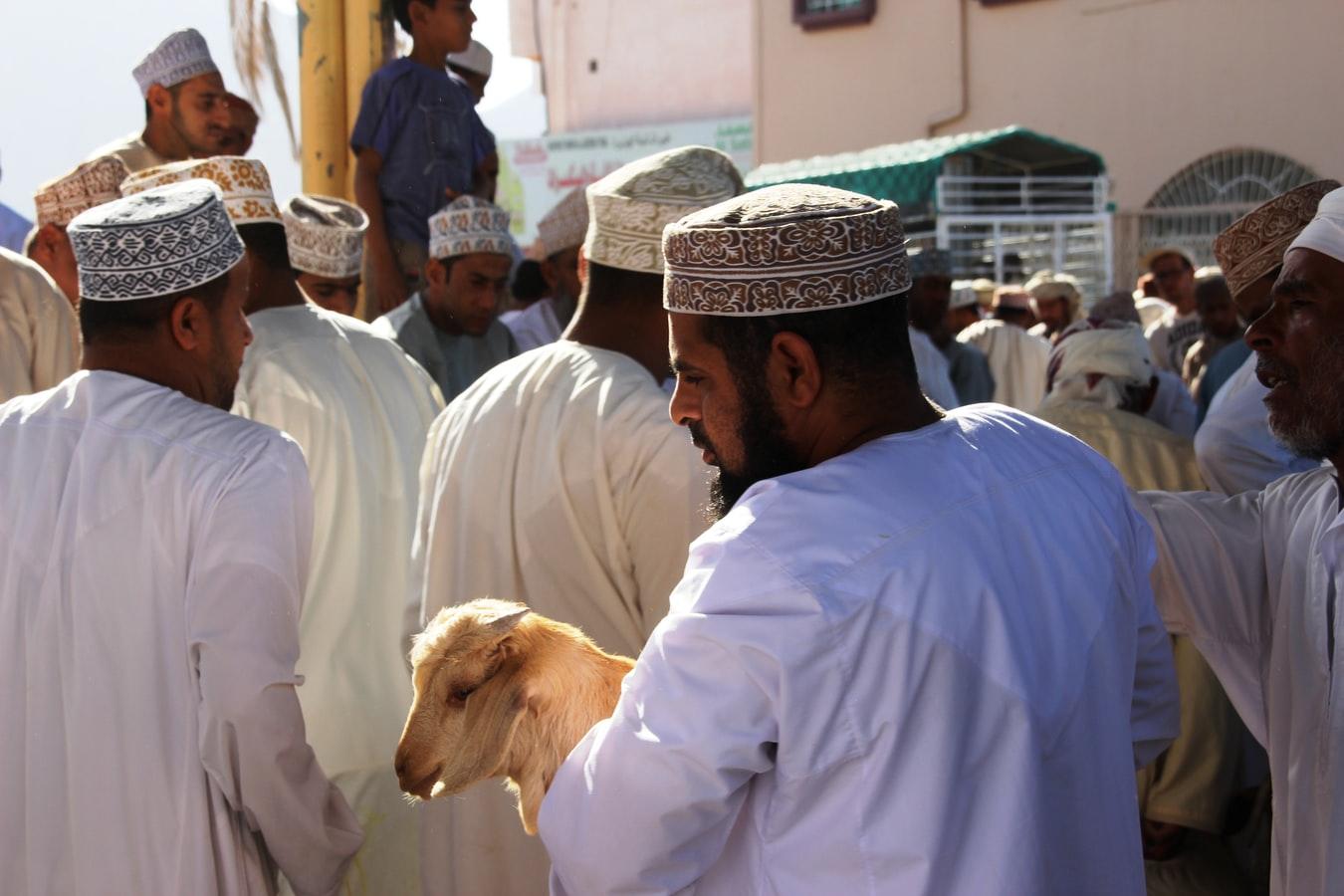 Auslandspraktikum in Oman - Sohar