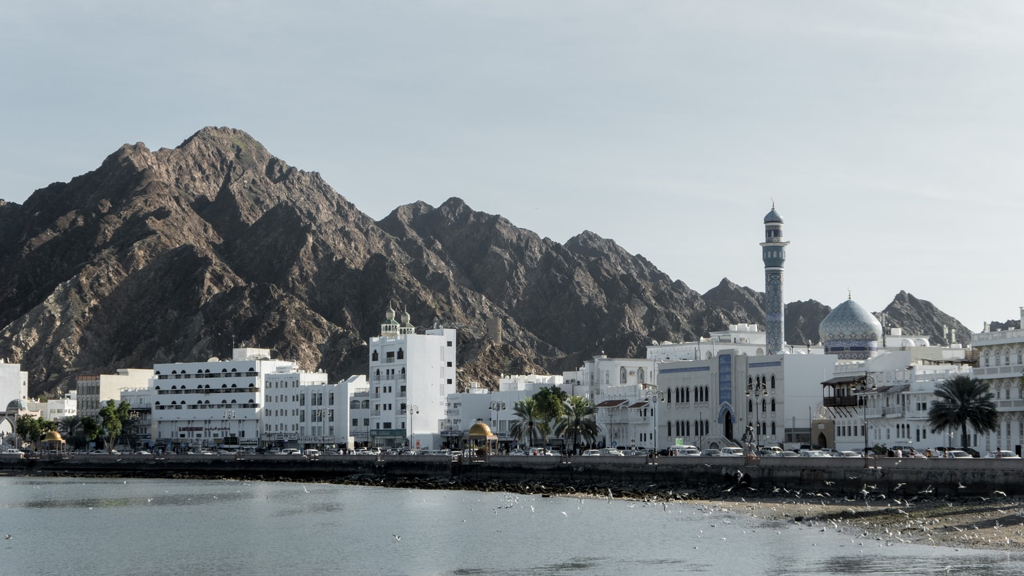 Auslandspraktikum in Oman - Makat