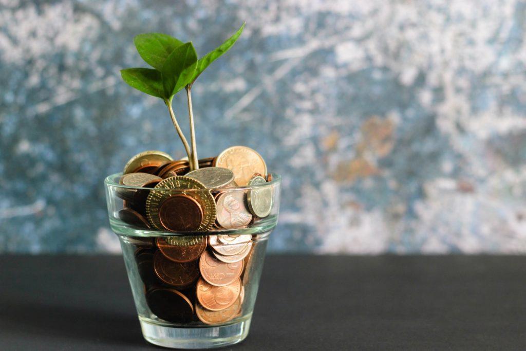 Pflanze wächst aus Glas mit Geldstücken