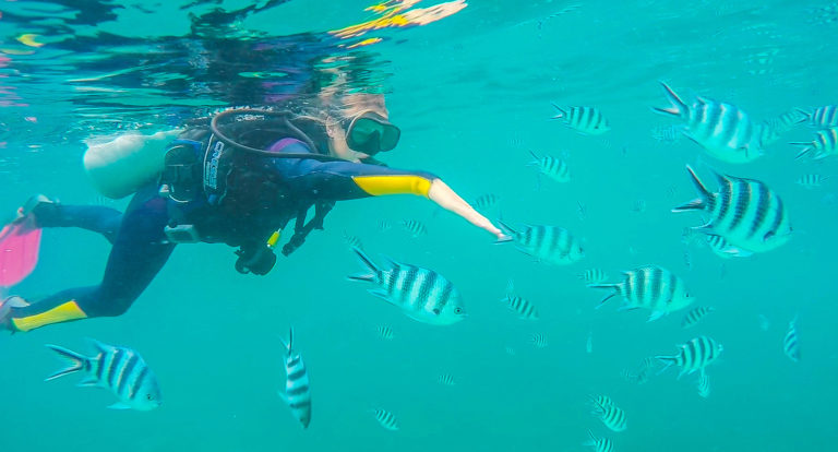 PADI dive Training